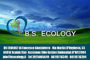 Bs Ecology